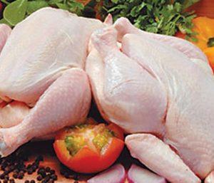 دجاج مجمد