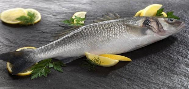 سمك القاروص